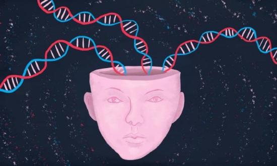 Генетическая предрасположенность к развитию нарушений речи