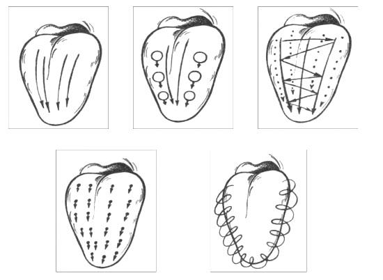Движения при логомассаже языка