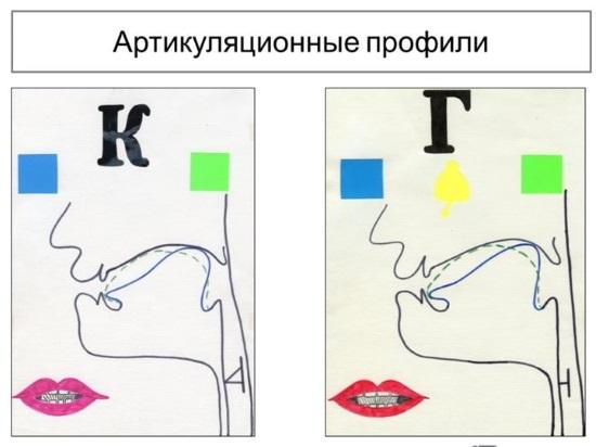 Артикуляционные профили звуков к и г