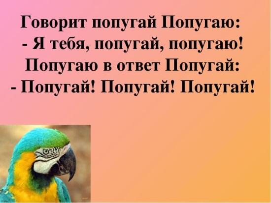 Скороговорка про попугаев