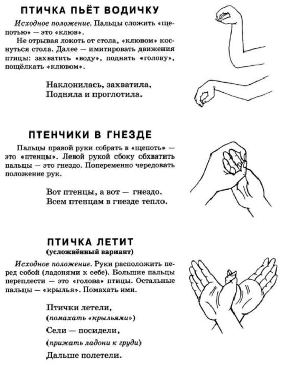"""Пальчиковая гимнастика, упражнение """"Птичка"""""""