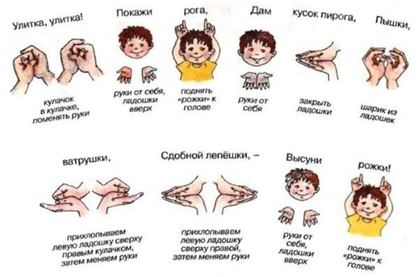 Комплекс упражнений пальчиковой гимнастики