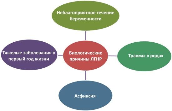Биологические причины ЛГНР