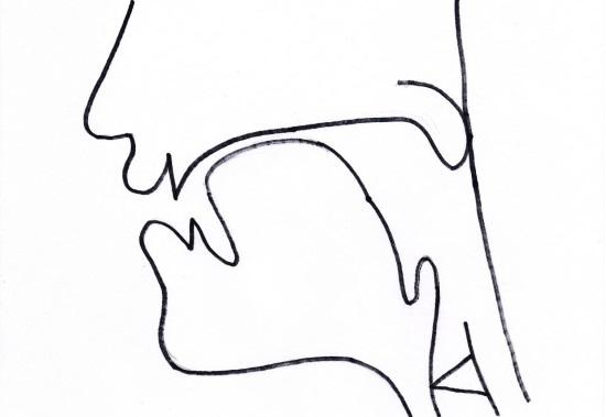 Артикуляционный уклад звука щ