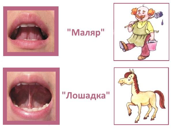 """Артикуляционные упражнения """"Маляр"""" и """"Лошадка"""""""