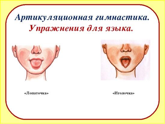 Артикуляционные упражнения для языка